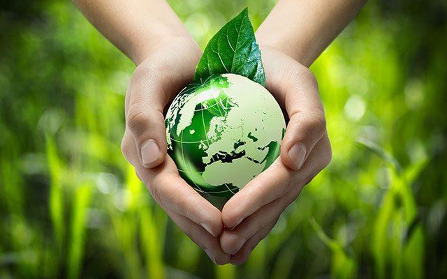 Global Environment Vision