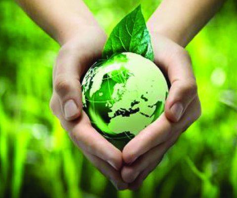 Tầm nhìn môi trường toàn cầu
