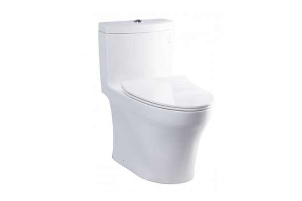 One - Piece Toilets with Soft Cover