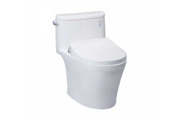 One - Piece Toilets with Ecowasher
